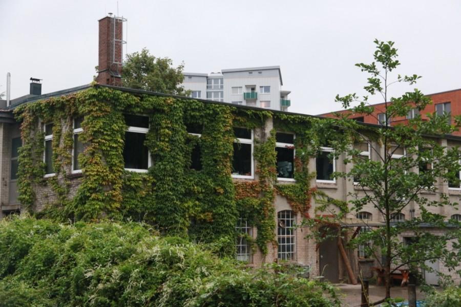 Stadtteilrundgang Hamburg Hamm